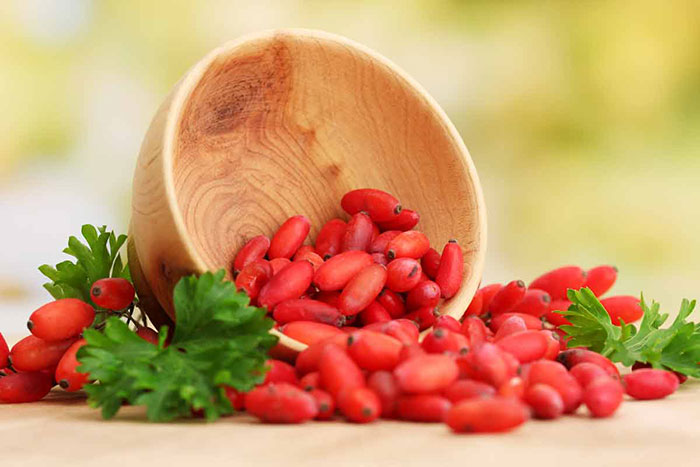 Export barberry price