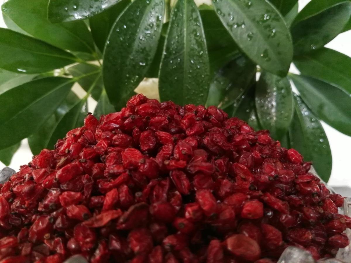 Impressive health benefits of barberry